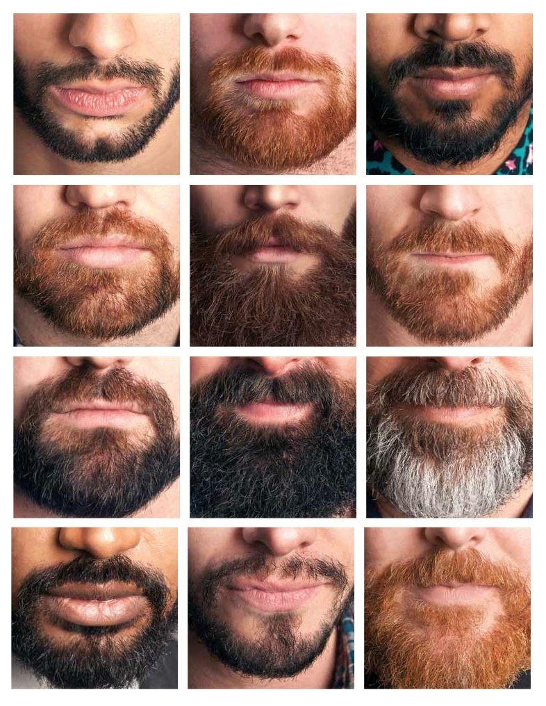 Как можно отрастить бороду фото них можно