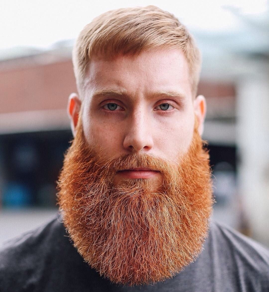 Полная мужская борода